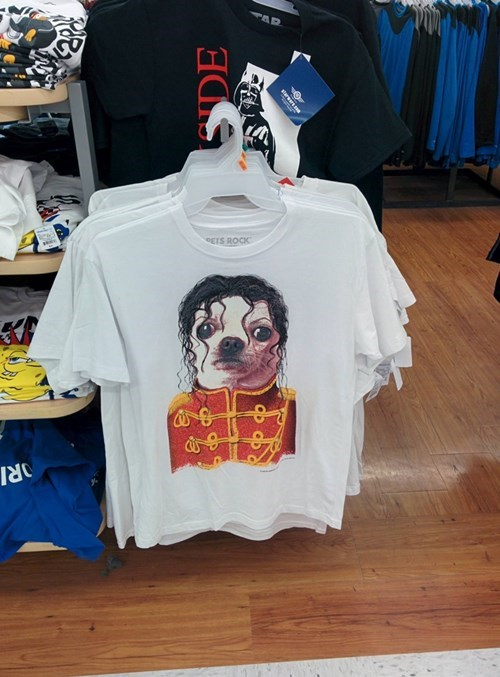 poorly dressed michael jackson chihuahua - 8166843904