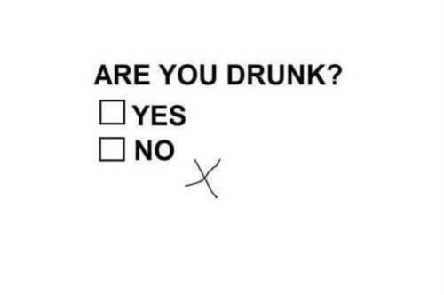 beer drunk quiz funny - 8167353344