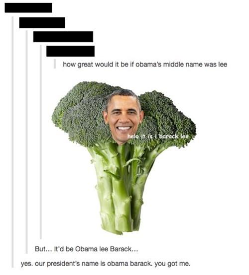 barack obama puns tumblr failbook g rated - 8167399936