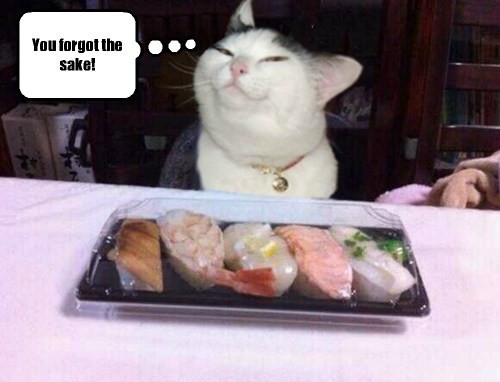 Cats,drinking,funny,sushi