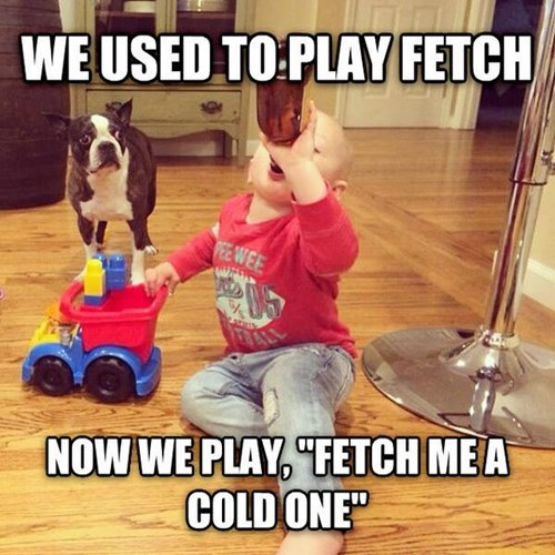 beer fetch kids funny - 8167552000