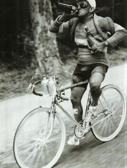bicycle,good idea,funny,vintage,wine