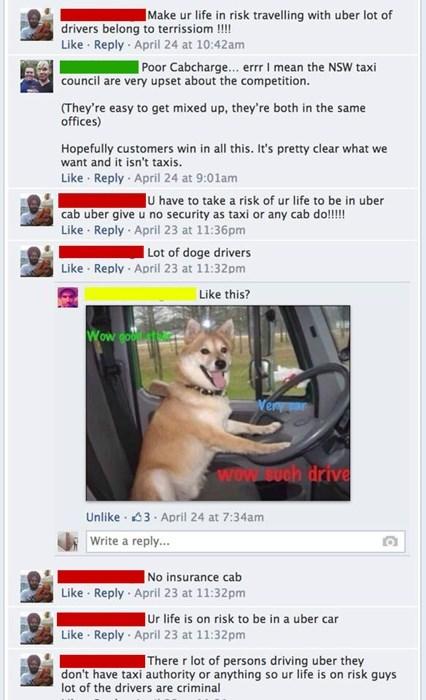 doge,uber,taxi