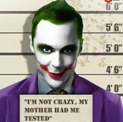 big bang theory,joker,funny,TV