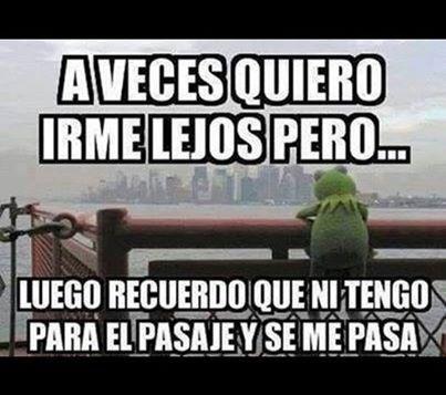 bromas Memes - 8169305088