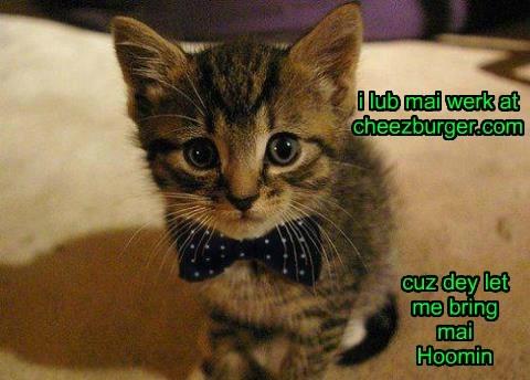 Cheezburger Image 8169420800