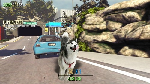 Canidae - SCORE 11193 FLIPPING EASY REORMASUCCESSFUL 360 FRONT ORBCKFLIP LICK CAR