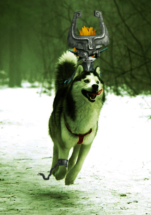 dogs,list,photoshop,photoshop battle,huskies,Reddit