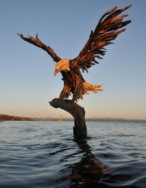 art eagles driftwood - 8170856192
