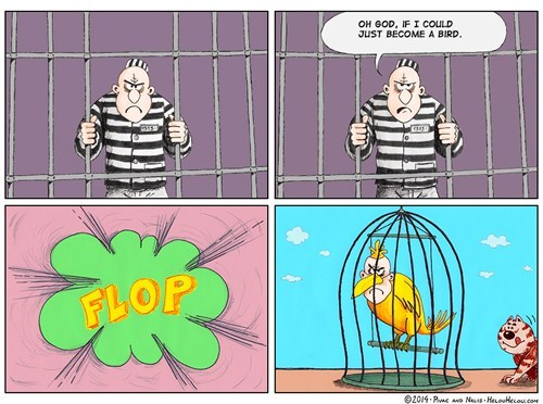 birds cages wtf web comics