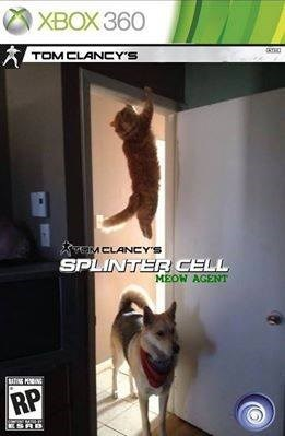 Cats,animals,Catuday,Splinter Cell,Tom Clancy