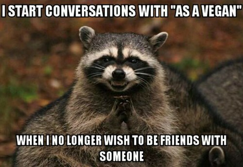 conversation,funny,raccoon,vegan