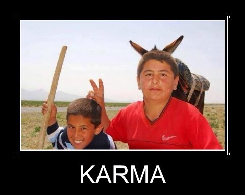 animals,karma