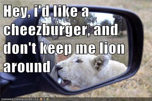 Cheezburger Image 8174022656