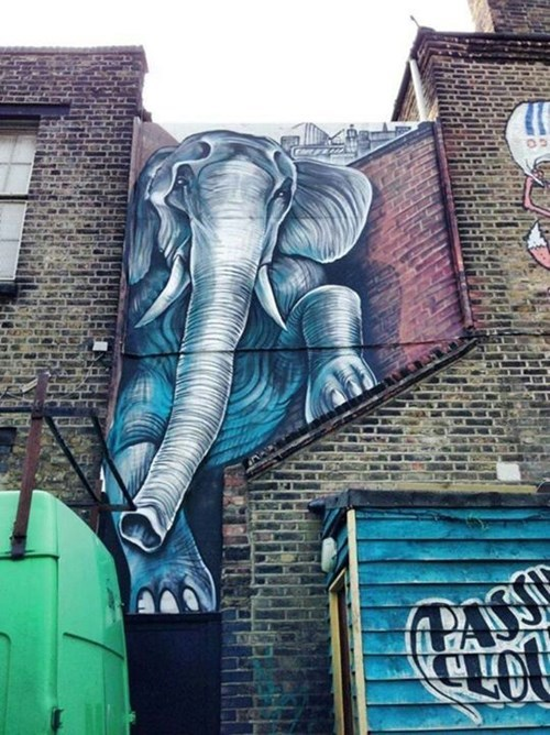 Street Art,elephant,hacked irl
