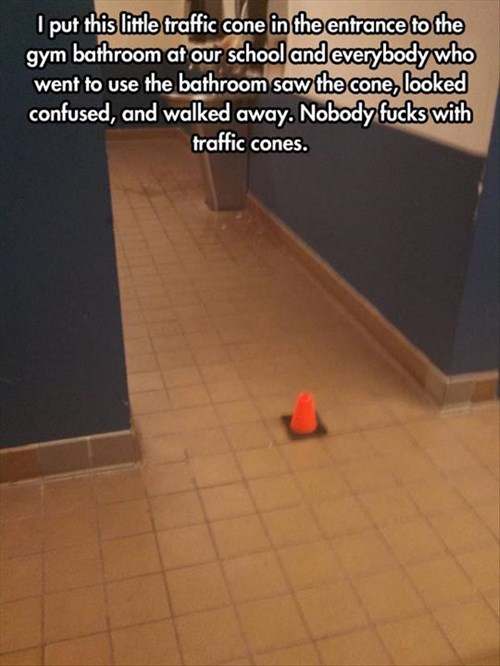 bathroom,school,trolling,prank,traffic cone,g rated