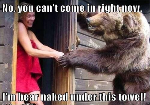 bears dating puns naked towel - 8175063040