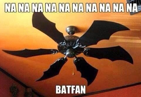 puns,fan,batman