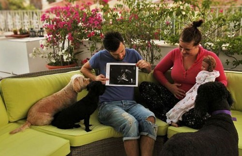 baby announcement dogs parenting pregnant ultrasound - 8177343744