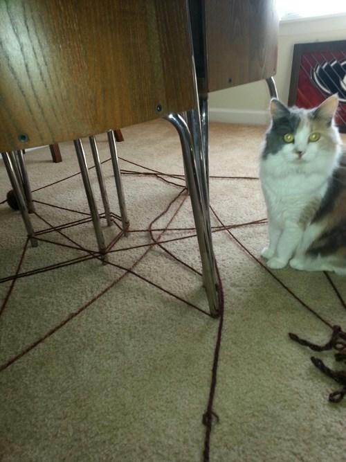 art Cats cute yarn mess - 8177567488