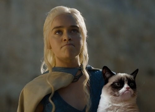 Daenerys Targaryen Game of Thrones Grumpy Cat - 8177580288