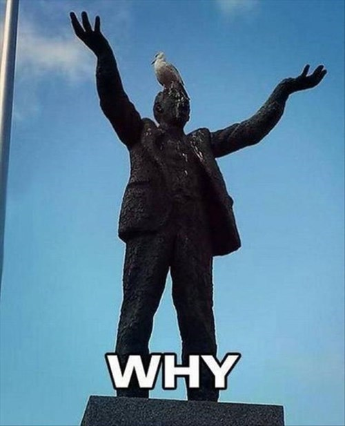 birds funny statues poop - 8177686784
