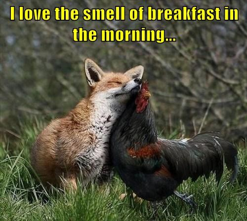 I love the smell of breakfast in the morning...
