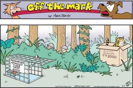 boxes tigers Cats web comics - 8178501632