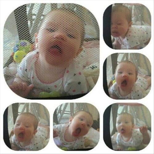 baby,lick,parenting,playpen