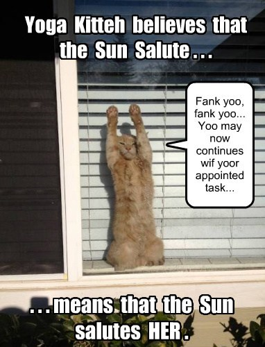 Yoga Kitteh believes that the Sun Salute . . . . . . means that the Sun salutes HER . Fank yoo, fank yoo... Yoo may now continues wif yoor appointed task...