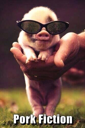 sun glasses puns cute pulp fiction funny - 8179260416