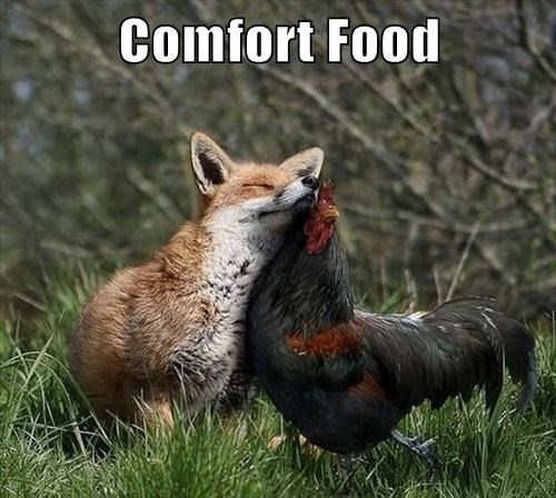 foxes chicken puns comfort food - 8180348672