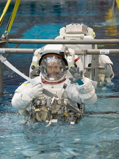 astronaut funny science space - 8180368896
