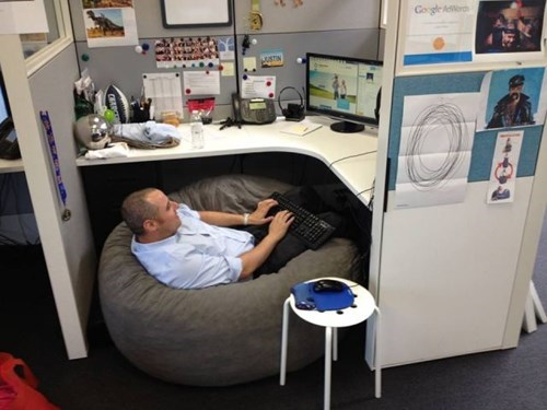 beanbag cubicle Office monday thru friday work - 8180431616