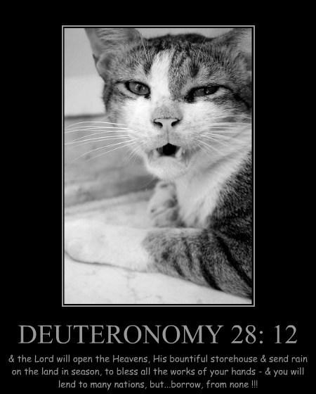 DEUTERONOMY 28: 12