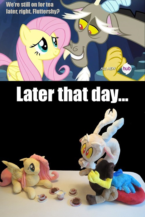 bff discord fluttershy - 8181926144