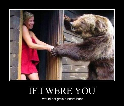 bears funny stupid towel - 8182511360