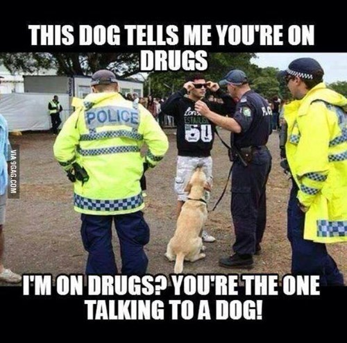 drugs dogs funny police - 8182680832