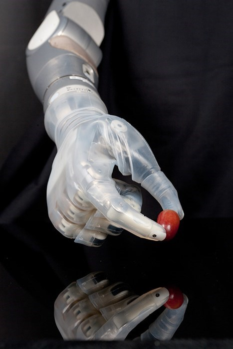 awesome hands funny science prosthetic - 8183055104