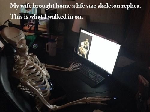 pr0n skeletons - 8183286784