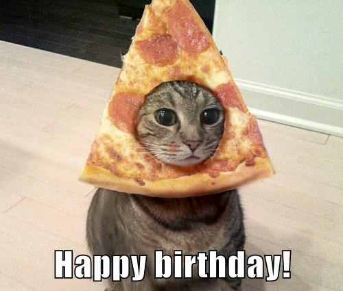 happy birthday meme with a cats head in a pizza slice