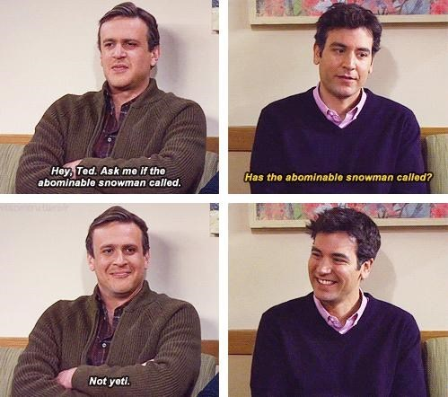 how i met your mother,jokes,funny,puns,yeti