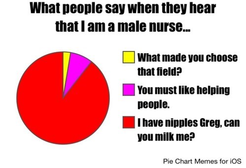 Pie Chart,monday thru friday,nurse,work
