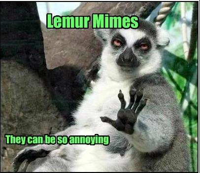 lemurs mimes funny - 8185154304