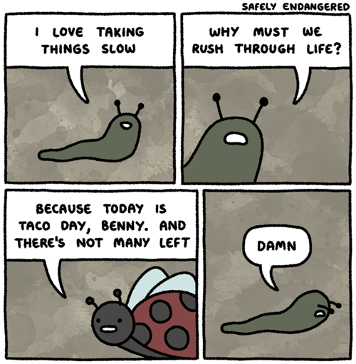 bugs tacos sad but true web comics - 8185223680