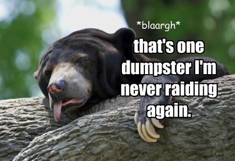 bears,garbage,dumpster,sick