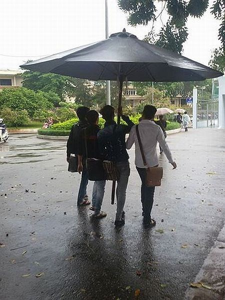 umbrella,poorly dressed,g  rated
