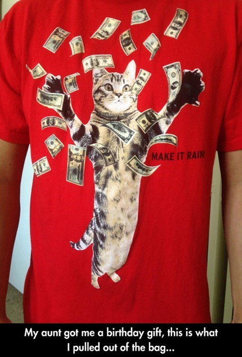 crazy cat lady T.Shirt Cats funny money - 8185381376