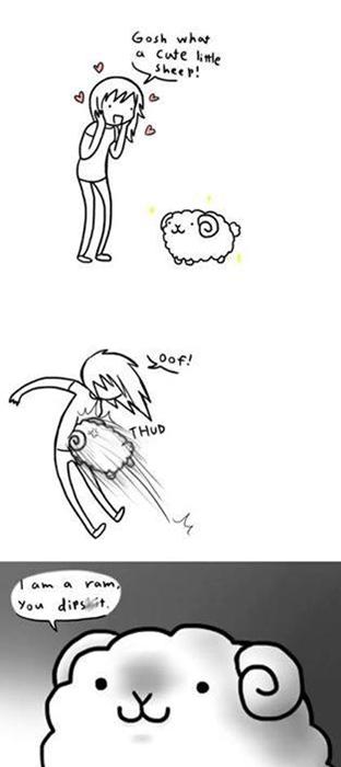 Rams critters sheep web comics - 8185391616