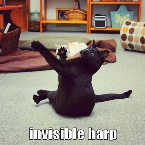 harp mime invisible Cats funny - 8185944576
